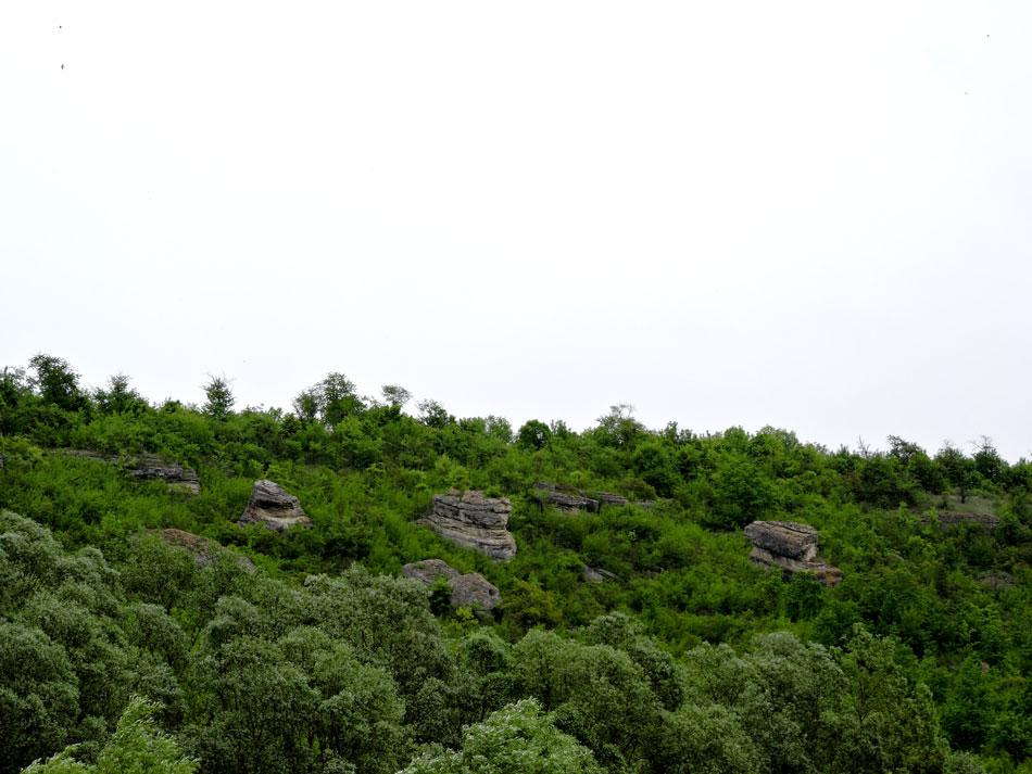 Дністровський-каньйон-сплав-відпочинок-на-природі