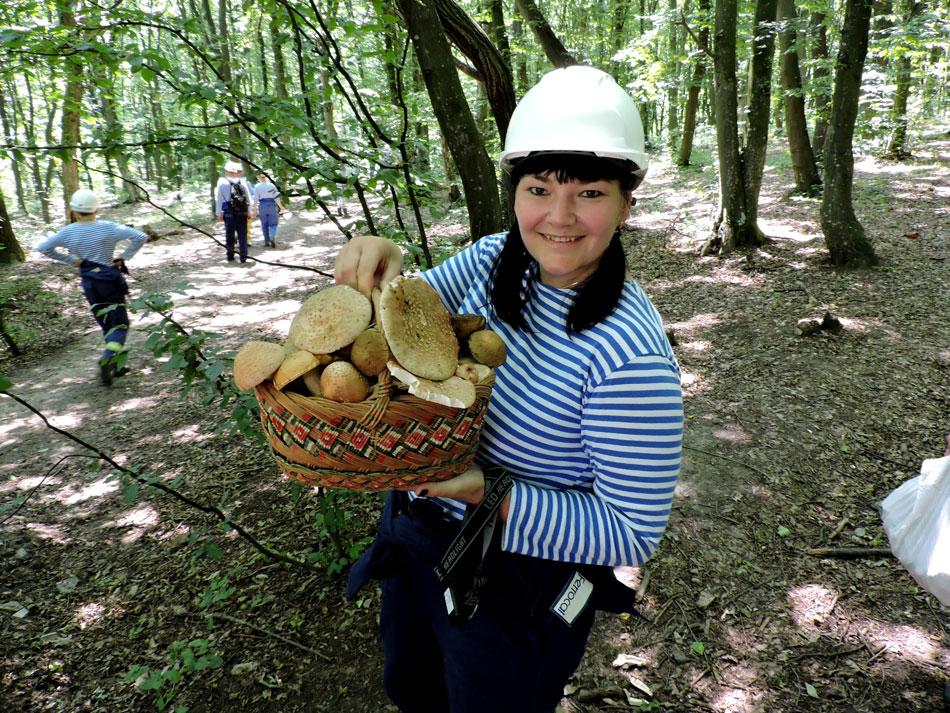 збір-грибів-у-лісі-грибний-тур